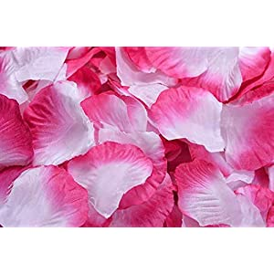 yfklo 500pcs Simulation Rose Petals Artificial Flowers Party Wedding Decoration (Purple red) 72