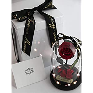 Rose in Glass Dome with Metal Engraved Plaque inspired by Beauty and the Beast Rose, Real Preserved Red Rose in Large Glass Dome with LED lights 5