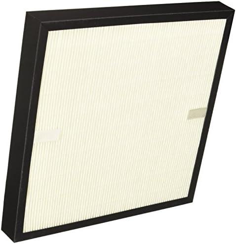 Delonghi AC100-AC150 Filtro de repuesto para purificador de aire, tamaño grande, filtro HEPA, filtro de carbón, Blanco: Amazon.es: Hogar