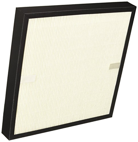 DeLonghi America AC230 Replacement Air Purifier Filter ()