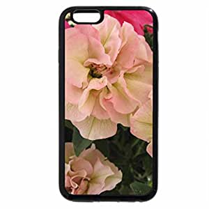 iPhone 6S Plus Case, iPhone 6 Plus Case, flowers rose colour in my garden