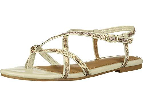 (Aerosoles A2 Women's Short Hand Flat Sandal, TAN Snake, 8.5 M US)