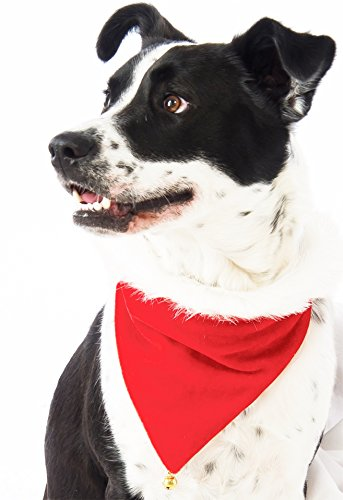 [Rubie's Santa Bandana Dog Costume] (Weimaraners In Costumes)