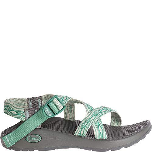 (Chaco Footwear Z1 Classic Sandal - Women's Empire Pine (8))