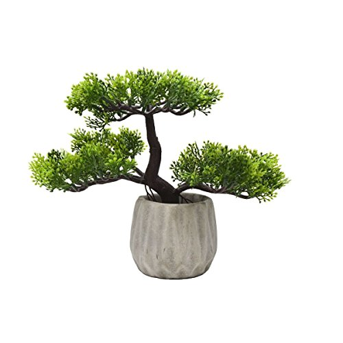 (Artificial Japanese Cedar Bonsai Tree 8 Inch Tall - Best Gift Zen Garden Modern Planter Pot)