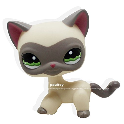 Characters Who Guess Costumes (Rare Littlest Pet Shop Cream Gray Masked Short Hair Cat Kitty LPS)