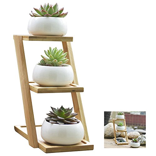 succulent-plantersymtmwhite-ceramic-planterset-of-3-mini-succulent-flower-pots-with-bamboo-tray
