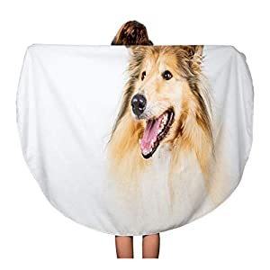 Semtomn 60 Inches Round Beach Towel Blanket Brown Animal Collie Rough on Breed Brightly Canine Dog Travel Circle Circular Towels Mat Tapestry Beach Throw 12