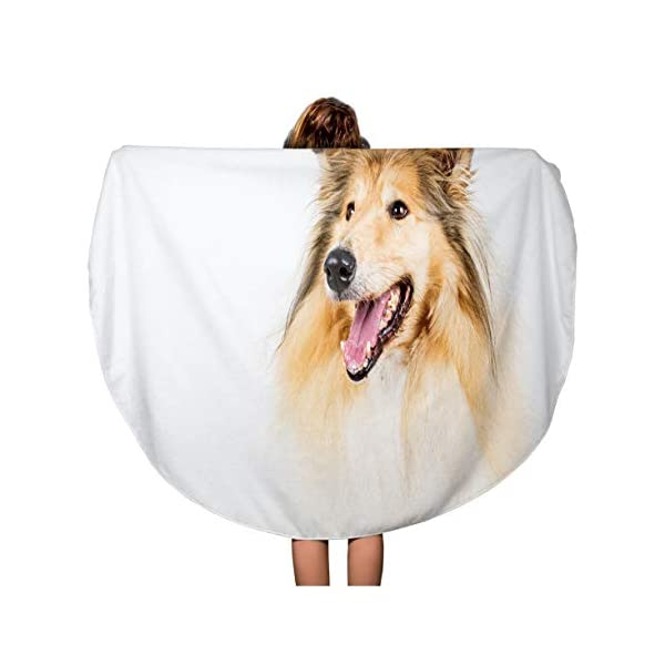 Semtomn 60 Inches Round Beach Towel Blanket Brown Animal Collie Rough on Breed Brightly Canine Dog Travel Circle Circular Towels Mat Tapestry Beach Throw 1