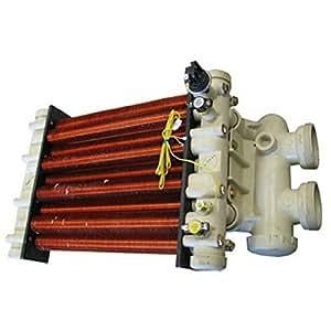 Pentair 472167intercambiador de calor con cabezal de repuesto MiniMax CH 250piscina y Spa calentador