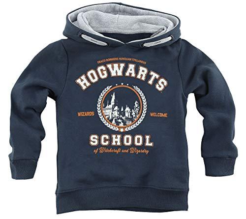 Harry Potter Hogwarts School Trui met capuchon navy Baby's & ouders, Fan merch, Film, Hogwarts