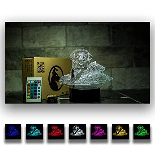 Pet3dleds | Labrador Retriever 3D Illusion Decorative Nightlight with Remote Control | Golden Retriever Gifts | Cool Soft Light | Safe for Kids | Labrador Christmas Gift | Labrador Lover