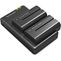 NP F550 RAVPower Battery Charger Set for Sony NP F970, F750, F770, F960, F550, F530, F330, F570, CCD-SC55, TR516, TR716, TR818, TR910, TR917 and more (2-Pack Replacement Battery Kit, Dual Slot Charger