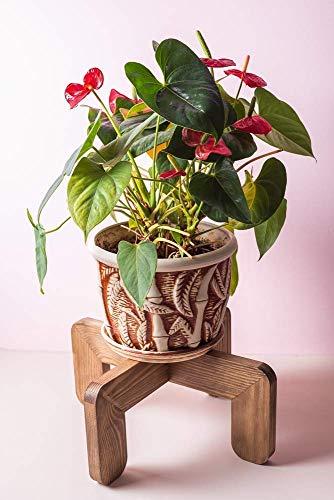 Mid Century Indoor Plant Stand Modern 14 Inch - Decorative Wooden Flower Vase Pot Holder - Corner Wood Potted Pedestal Minimalist Rustic Planter Rack Centerpiece Housewarming Gif - POT NOT ()