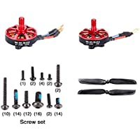Walkera Runner 250 (R) Advanced GPS Quadcopter Drone [QTY: 1] Runner 250(R)-Z-09 Clockwise Brushless Motor (CW)(WK-WS-28-014) for Advanced GPS Quadcopter Drone KV2500 [QTY: 1] 250(R)-Z-10 Counter (CCW