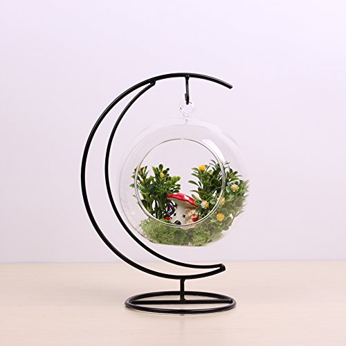 - Dulinlan Hanging Glass Terrarium Plant Container with Half Moon Shape Metal Stand