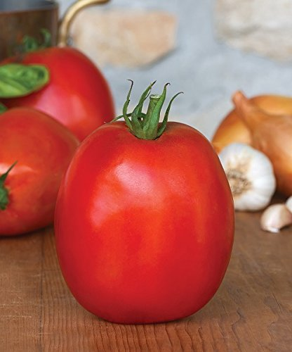 super tomato seeds - 8