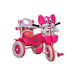 Amardeep and Co Baby's Tricycle...