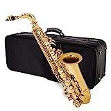 Jean Paul USA Alto Saxophone