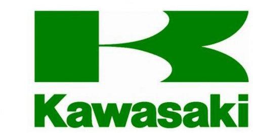 Kawasaki OEM Air Filter Vulcan EN500 LTD 97-09 11013-1250