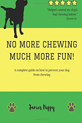 No More Chewing, Much More Fun!: A complete guide on how to prevent your dog from chewing