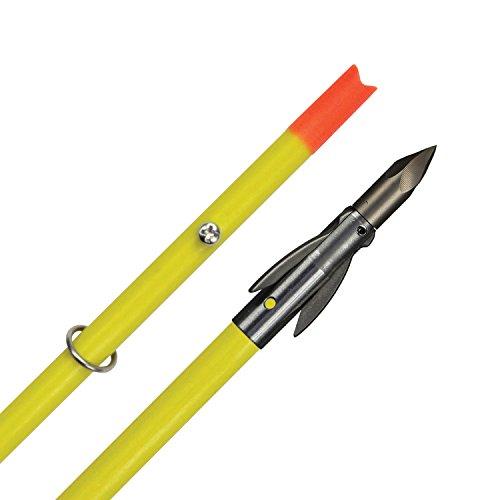 - AMSBowfishing Crossbow Bolt w/Ankor FX Point...