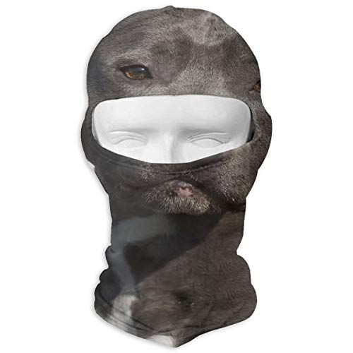 Pitbull in Front of American Flag Outdoor Cycling Mask Sunscreen Balaclava Hat Dustproof Anti Snow Haze Windproof -