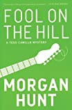 Front cover for the book Fool on the Hill by Morgan Hunt