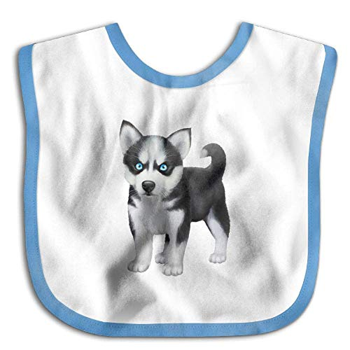 FANRENYOU Cute Husky Newborn Baby Boys Girls Towel Bib Skin-friendly Saliva Towel Bibs RoyalBlueOne Size