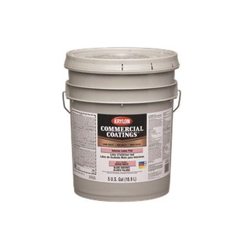 Sherwin K21137250-20 Krylon Latex Paint Bronze Flat White 5 Gal