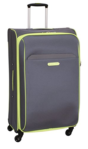 swiss-cargo-trulite-28-inch-spinner-luggage-gray-green-checked-large