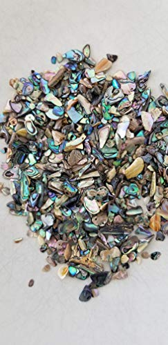 Paua Abalone Inlay Supplies for Jewelers, Turners, Woodworkers, Luthiers, Professionals & Hobbyists (Paua Shell Inlay)