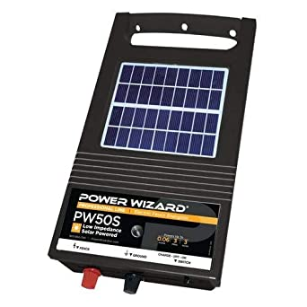 Amazon.com: Potencia de salida Wizard pw50s, 6 V Cargador ...