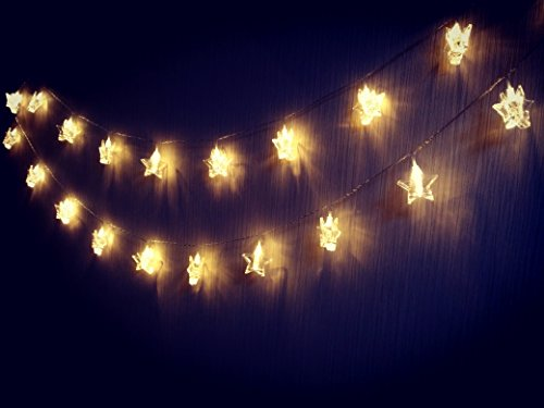 20 LED Photo Star Clips String Lights, Christmas Indoor Lights, USB Powered,16 FT, Gorgeous Warm White Light - for Hanging Photos Pictures Cards and Memos, Ideal gift for Dorms Bedroom Decoration