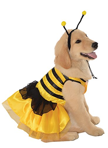UHC Baby Bumblebee Outfit Theme Fancy Dress Puppy Halloween Pet Dog Costume, M -