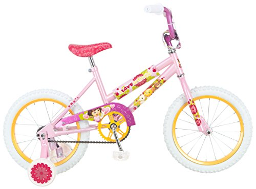 Check Out This Dora Bicycle