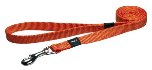 Rogz Utility Medium 5/8 Snake Fixed 6' Long Reflective Dog Leash, Orange by Rogz