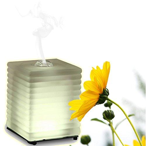 KOKO AROMA Aromatherapy Essential Oil Diffuser (ON SALE Limited Time) - Venus Glass - Innovative Ultrasonic Oil Burner - Soothing Warm LED Light - Elegant and Stylish Spa Vapor (Aroma Oil Burner)