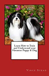Learn How to Train and Understand your Havanese Puppy & Dog