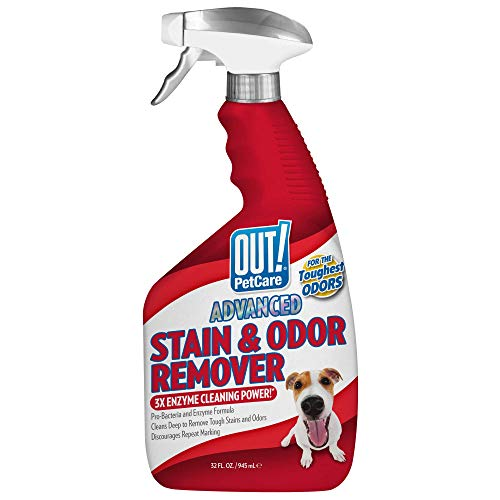 OUT! Advanced Stain and Odor Remover | Pet Stain and Odor Remover | 32 Ounces (Best Way To Remove Cat Urine Odor)
