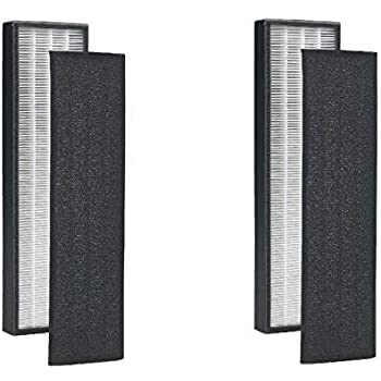 .com: 2 pack - true hepa replacement filter for germguardian ...