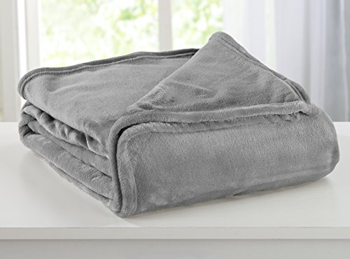 Solid Flannel Fleece All-Season Super Soft Luxury Bed Blanket. Lightweight and Warm for Ultimate Comfort. Portland Collection By Great Bay Home Brand. (Twin, Ash - Brand Portland