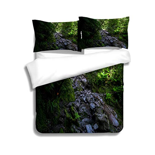 - MTSJTliangwan Duvet Cover Set Marker on The Tree Direction for Hike A Greenery of Nature in The Jungle 3 Piece Bedding Set with Pillow Shams, Queen/Full, Dark Orange White Teal Coral