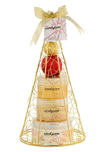 Bath & Body Holiday Tradition Gift Set for Women Aromatherapy peppermint holiday scent Christmas tree gift set Includes 2 Bath Bombs, Body Lotion, Shower Gel, Bath Salt Bath & Shower Beauty Set