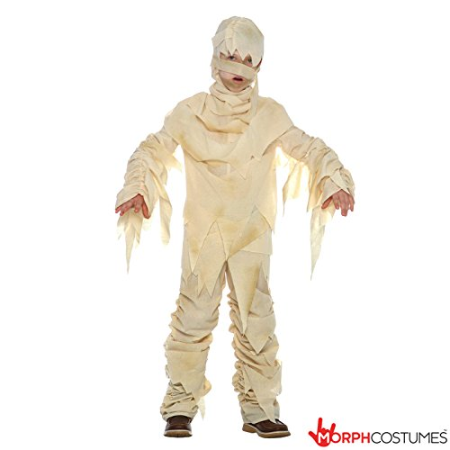 Boys Ancient Egyptian Mummy Costume Costume (Mummy Costumes)