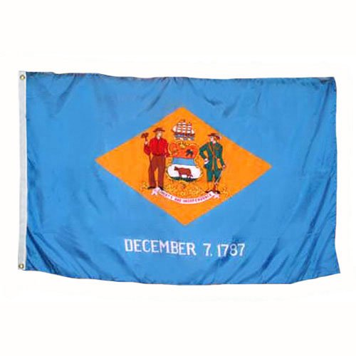 Delaware 1787 State Valley Forge Indoor Outdoor Dyed 2-Ply Polyester Flag Grommets 4' X 6' ()
