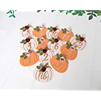 Little Pumpkin First Birthday Monthly Photo Banner Girl Party