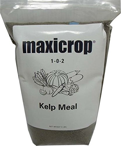 maxicrop-5000-kelp-meal-5-pounds