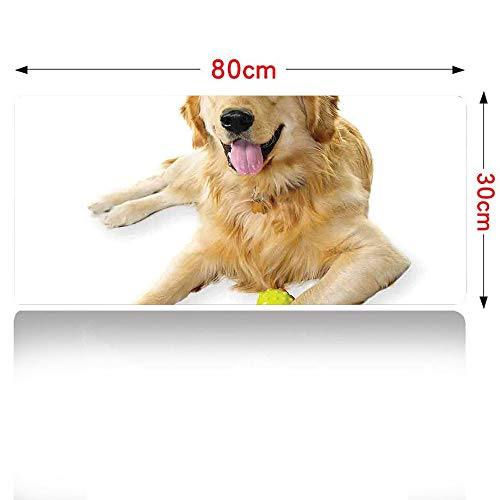 Golden Retriever Gaming Mouse pad Pet Dog Laying Down with Toy Friendly Domestic Puppy Playful Companion Mouse Pad Large Size 800x300mm Multicolor 32×12in