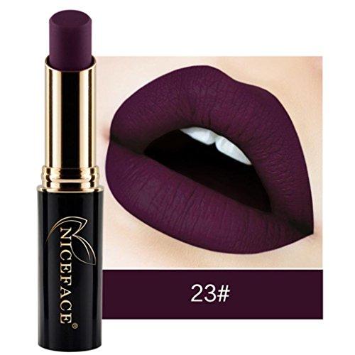 Hot Sale Lipstick Lip Matte Liquid Gloss Waterproof Makeup 12 Shades (23#)